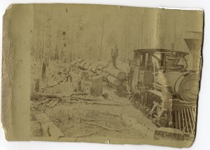 shay engine & logs before